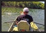 While I am doing ALL of the rowing AL catches ALL of the fish!. There is something wrong with this picture :)