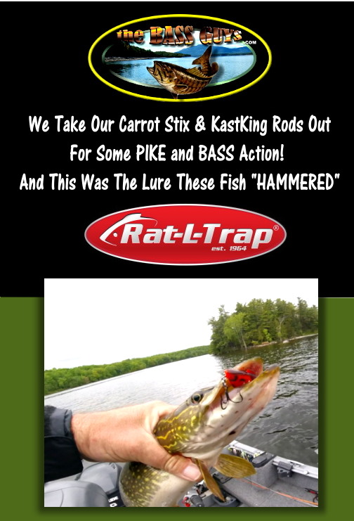 Pike & Bass on the Rat-L-Trap Lure